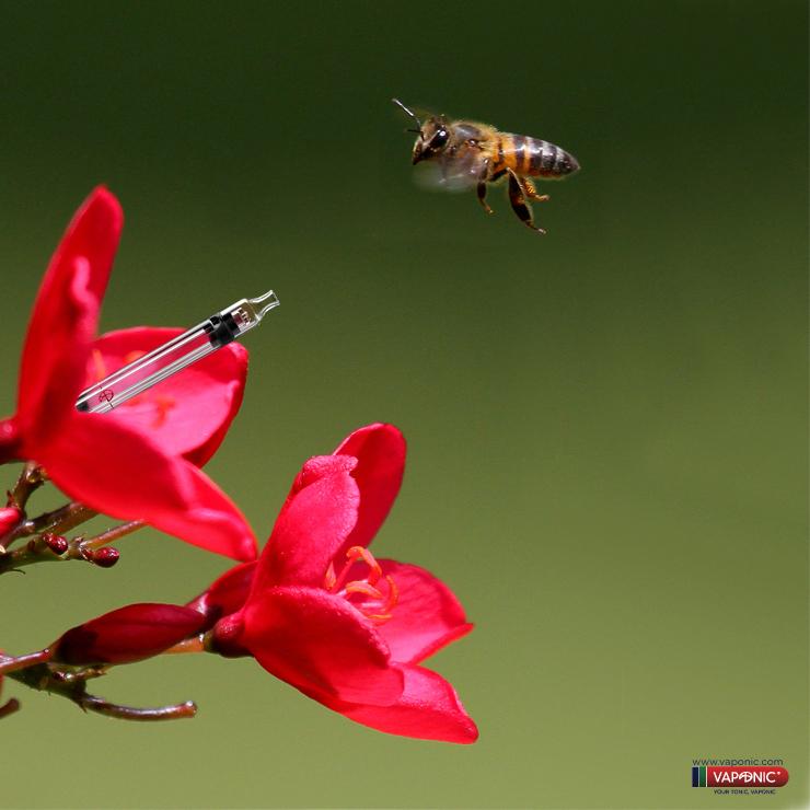 abeja vaponic